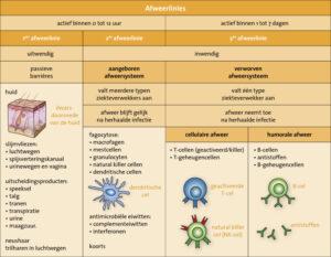 Maatregelen en het immuumsysteem, 1e afweerlinie